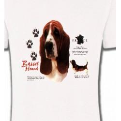 T-Shirts Basset hound Basset Hound (C)