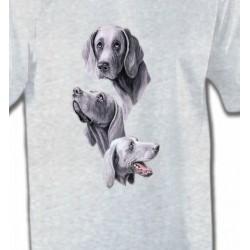 T-Shirts Braque de Weimar Braque de Weimar gris