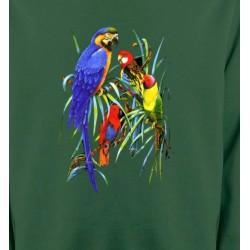 Sweatshirts Sweatshirts Enfants Perroquets Ara dans un arbre (T)