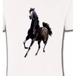 T-Shirts Cheval Marwari Cheval au galop (C)