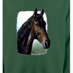 Sweatshirts Cheval Cheval brun (W2)
