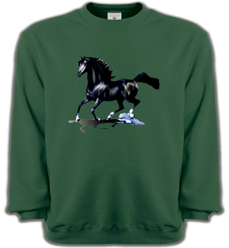 Sweatshirts Unisexe Cheval pur sang cheval noir (O)