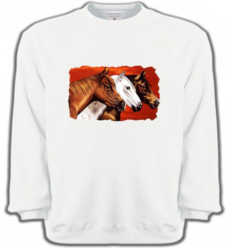 Sweatshirts UnisexeChevalTêtes de chevaux (B4)