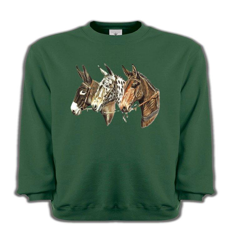 Sweatshirts EnfantsChevalTêtes de chevaux (F)