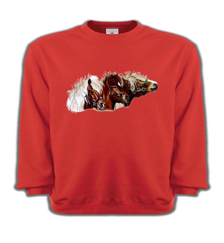 Sweatshirts EnfantsChevalponey (X2)