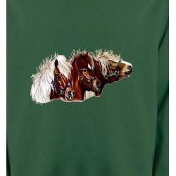 Sweatshirts Cheval poney (X2)