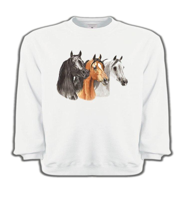 Sweatshirts EnfantsChevalTête de chevaux pur sang  noir brun et blanc (B)