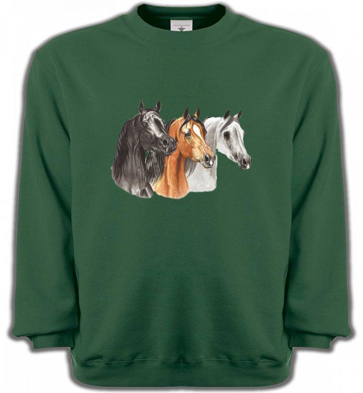 Sweatshirts UnisexeChevalTête de chevaux pur sang  noir brun et blanc (B)