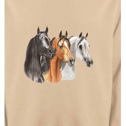 Sweatshirts Cheval Tête de chevaux pur sang  noir brun et blanc (B)