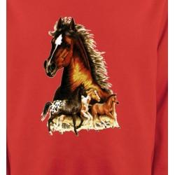 Sweatshirts Cheval Chevaux (F)
