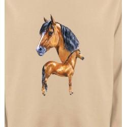 Sweatshirts Cheval Cheval brun (X)