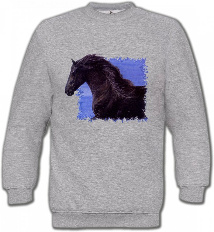 Sweatshirts Unisexe Cheval Frison Cheval (N)