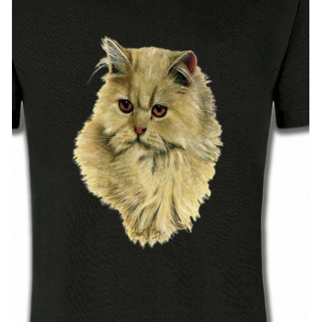 Chat Persan sable (R)