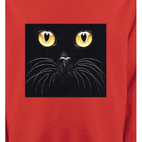 Chat noir (H1)