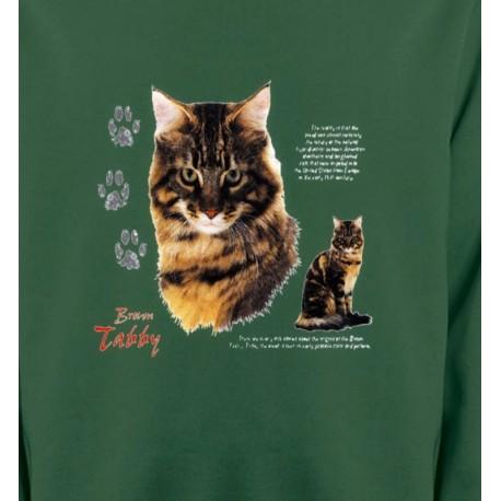 Chat tigré brun (Q)