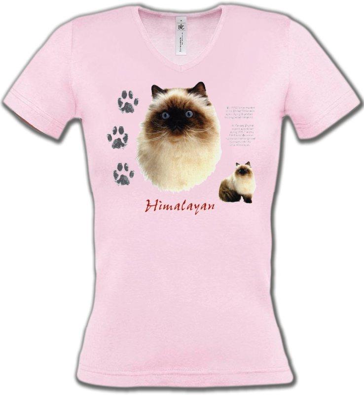T-Shirts Col V FemmesRaces de chatsChat Himalayen (U)
