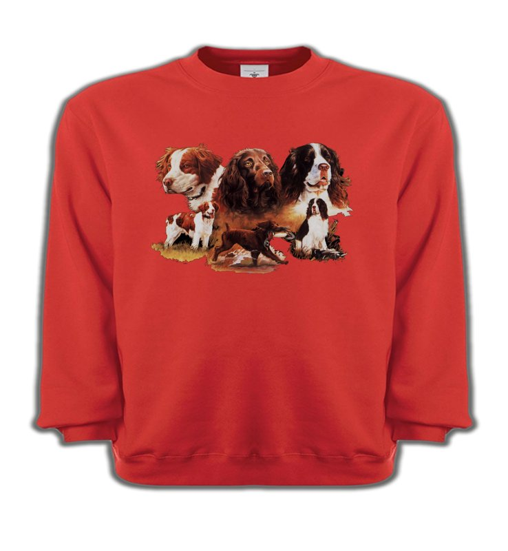 Sweatshirts EnfantsEpagneulEpagneul (A)