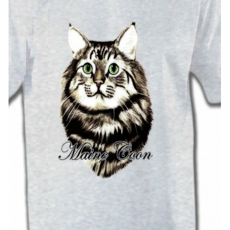 Chat Maine Coon (A)