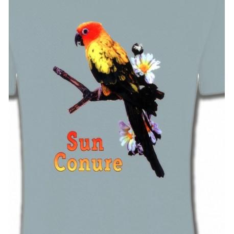 Perroquet Conure Soleil