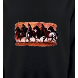 Sweatshirts Sweatshirts Unisexe Tribu indienne (J)