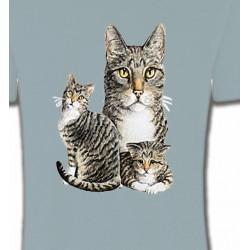 T-Shirts Races de chats Chats tigré gris (M2)
