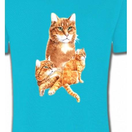 Chat tigré roux (L2)