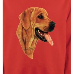 Sweatshirts Races de chiens Labrador sable (J)