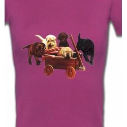 T-Shirts Races de chiens Bébé Labrador (B2G)