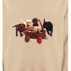 Sweatshirts Races de chiens Bébé Labrador (B2G)