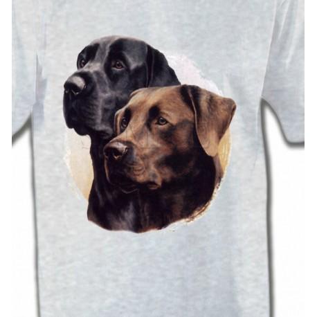 Labrador noir et chocolat (A)