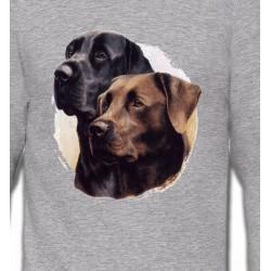 Sweatshirts Races de chiens Labrador noir et chocolat (A)