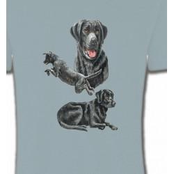 Labrador noir (C)