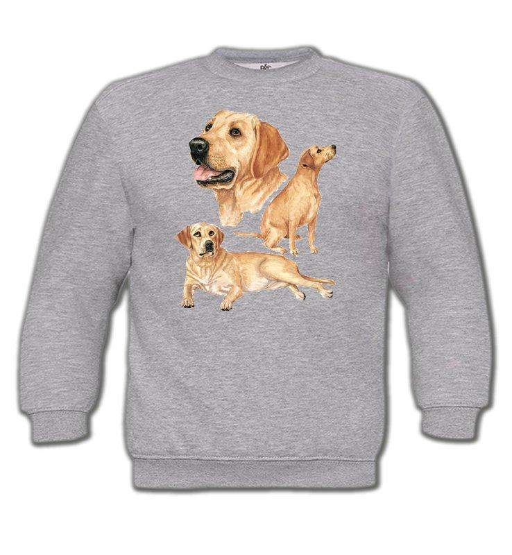 Sweatshirts EnfantsLabradorLabrador sable  (E)