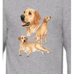 Sweatshirts Races de chiens Labrador sable  (E)