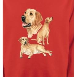 Sweatshirts Sweatshirts Unisexe Labrador sable  (E)
