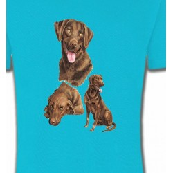 T-Shirts Races de chiens Labrador chocolat  (F)