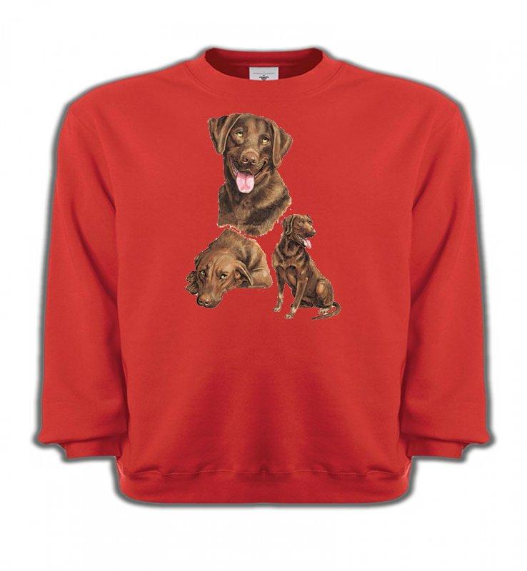 Sweatshirts EnfantsLabradorLabrador chocolat  (F)