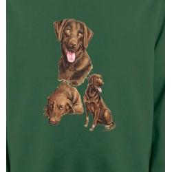 Sweatshirts Races de chiens Labrador chocolat  (F)