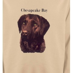 Sweatshirts Races de chiens Labrador chocolat (G)