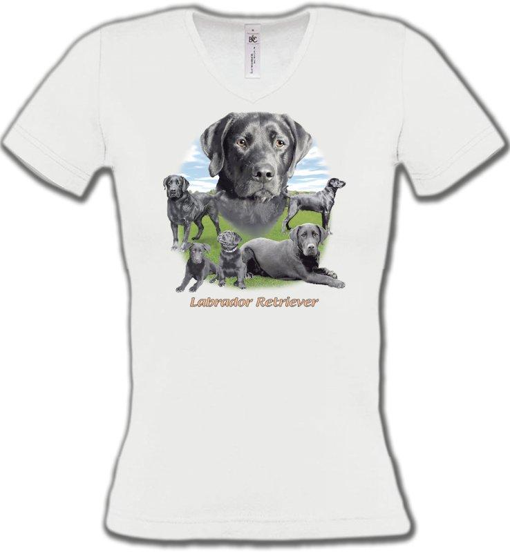 T-Shirts Col V FemmesLabradorLabrador paysage gris paysage (O)