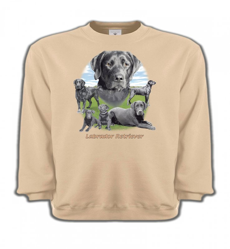 Sweatshirts EnfantsLabradorLabrador paysage gris paysage (O)