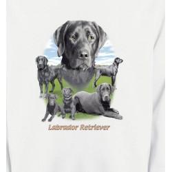 Sweatshirts Races de chiens Labrador paysage gris paysage (O)