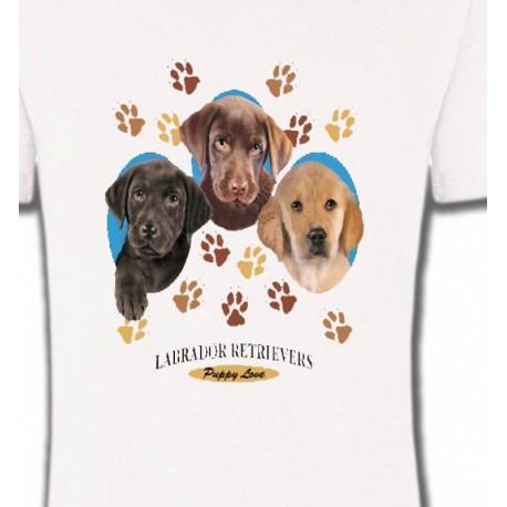 Bébés Labradors (U)