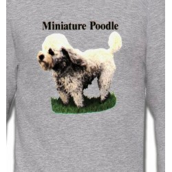 Sweatshirts Races de chiens Caniche nain (B)