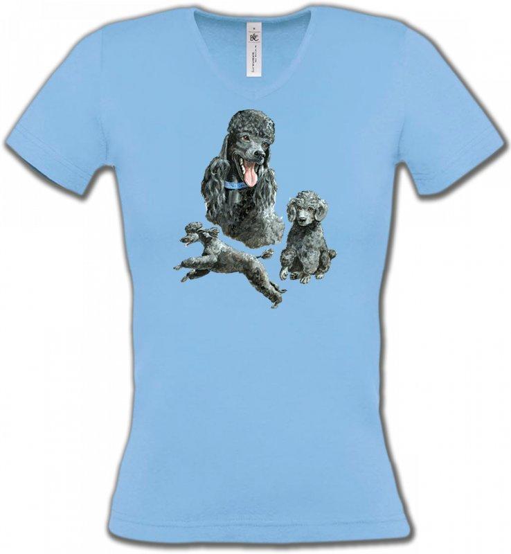 T-Shirts Col V FemmesCanichesCaniche gris (L)