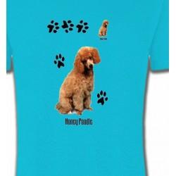 T-Shirts Caniches Caniche miel  (P)
