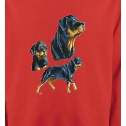 Sweatshirts Races de chiens Rottweiler (D)