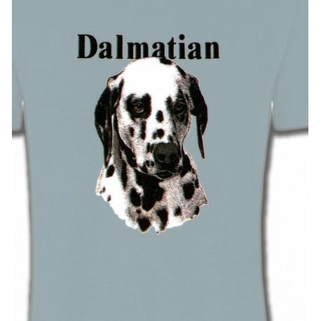 Tête Dalmatien (H)