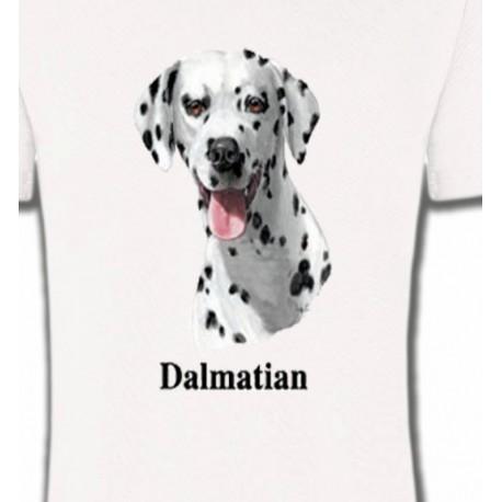 Tête Dalmatien (D)