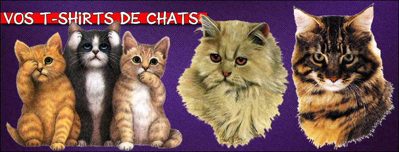 Races de chats